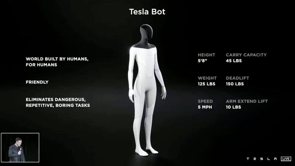 Elon musk's Tesla Bot